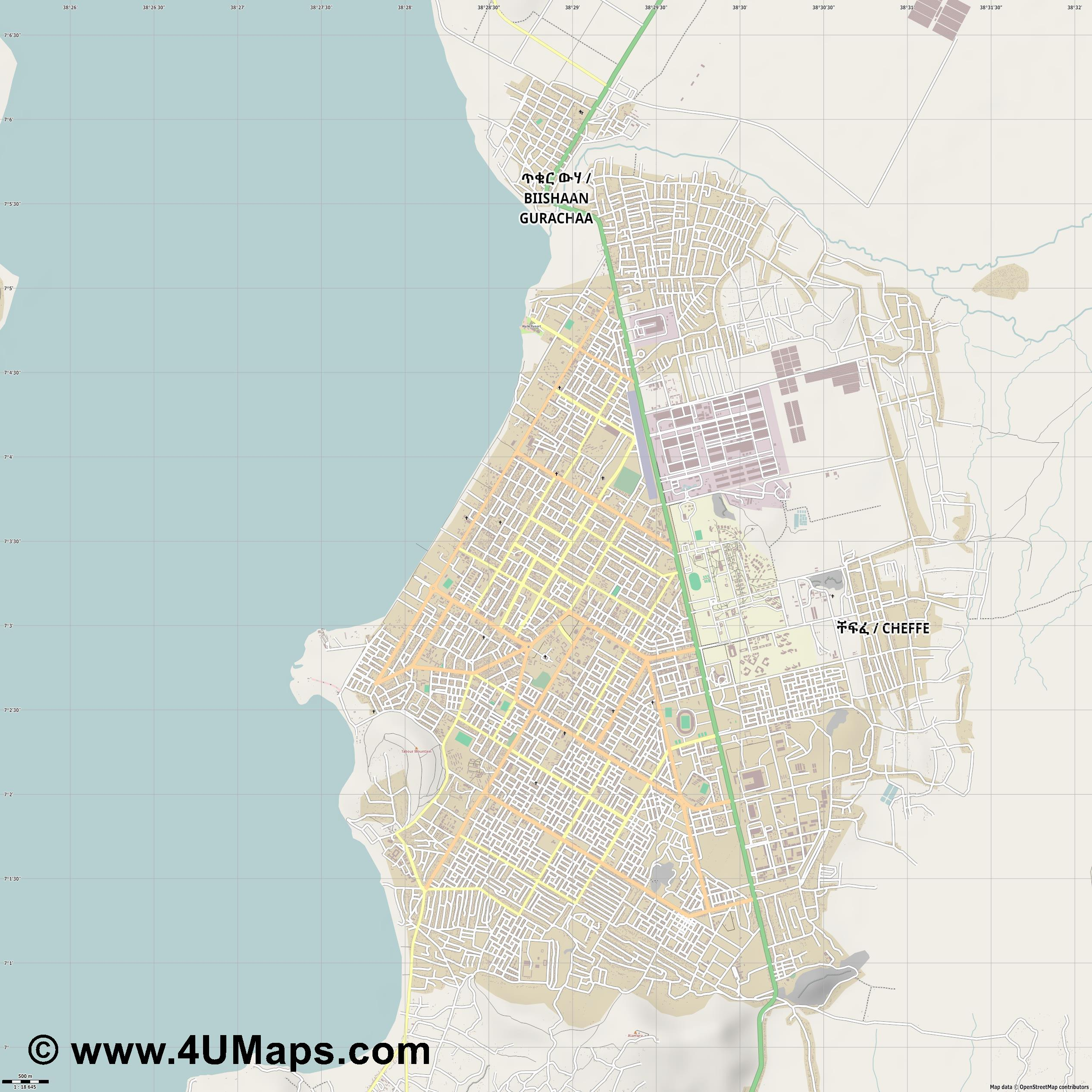 Awassa  jpg ultra high detail preview vector city map