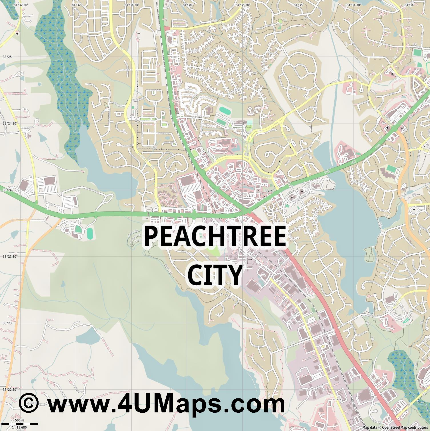 Peachtree City  jpg ultra high detail preview vector city map