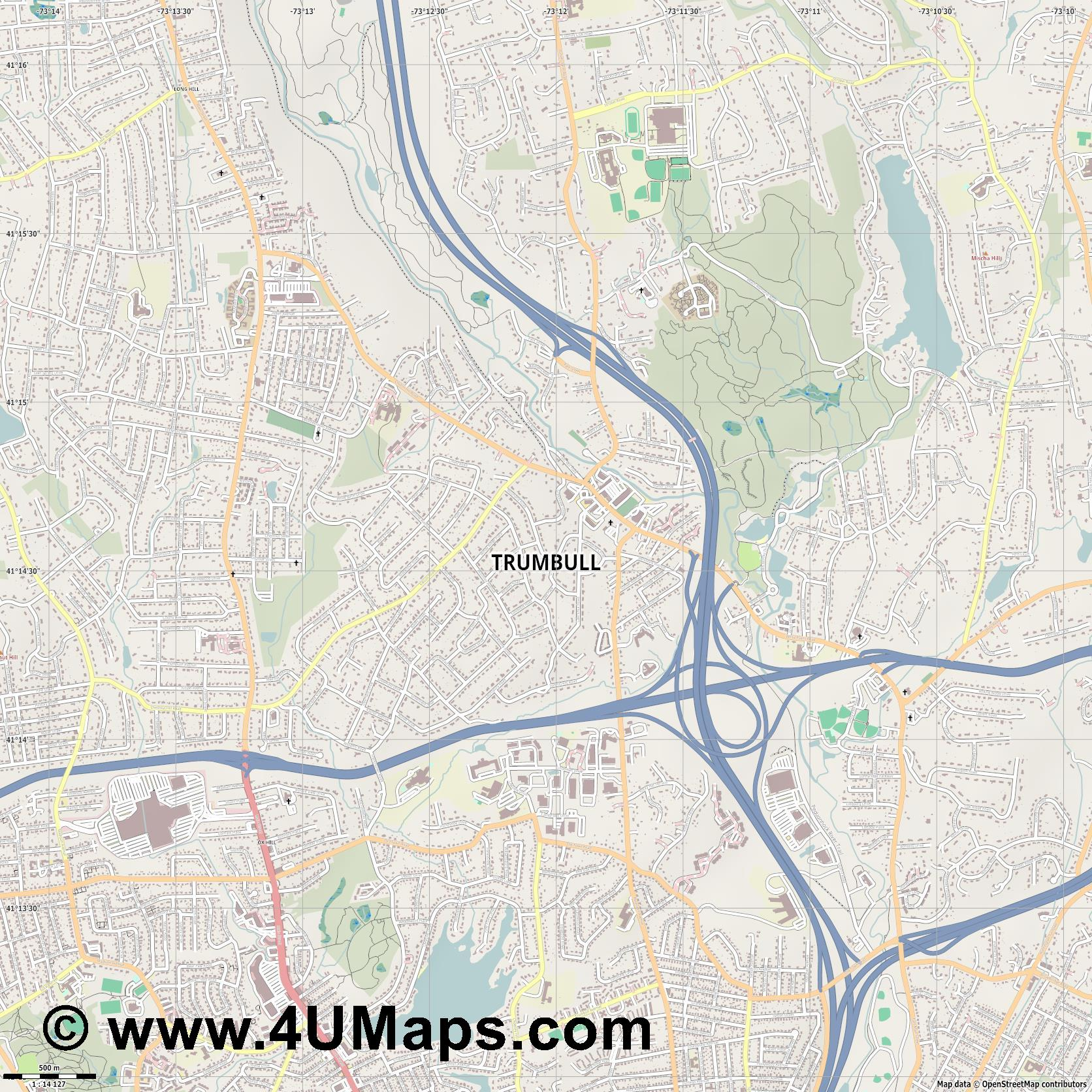 Trumbull  jpg ultra high detail preview vector city map