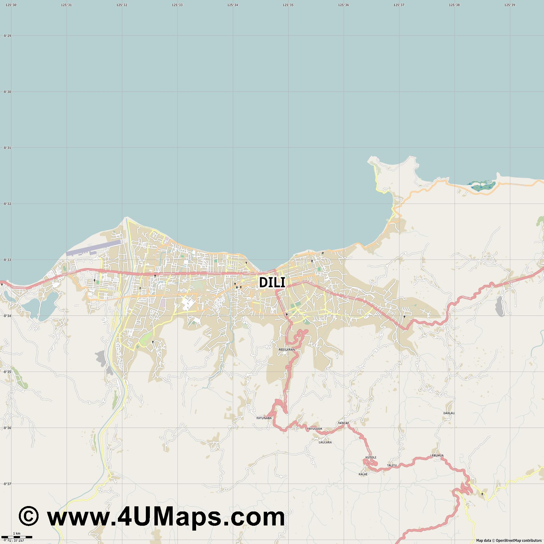 Dili  jpg high detail, large area preview vector city map
