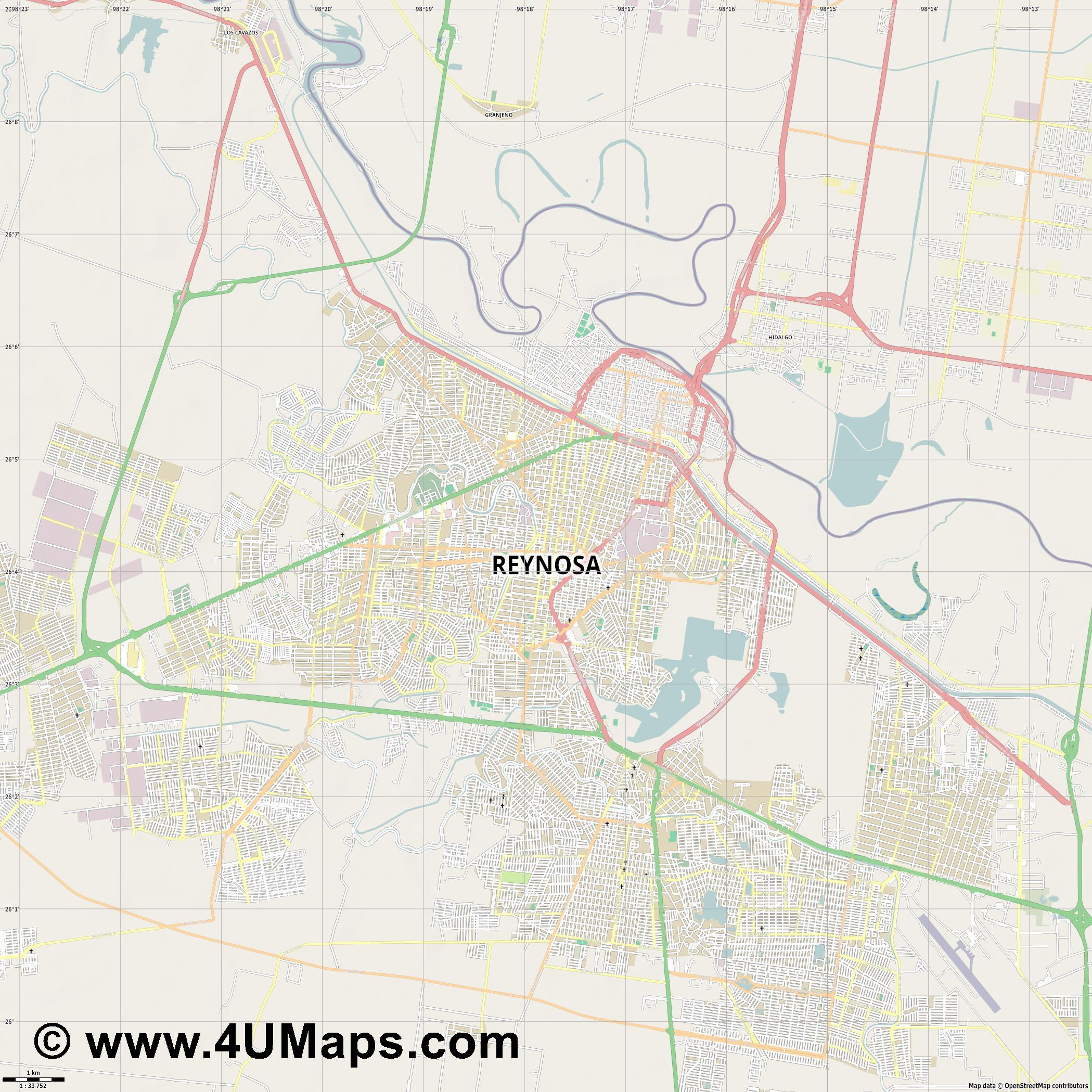 Reynosa  jpg high detail, large area preview vector city map