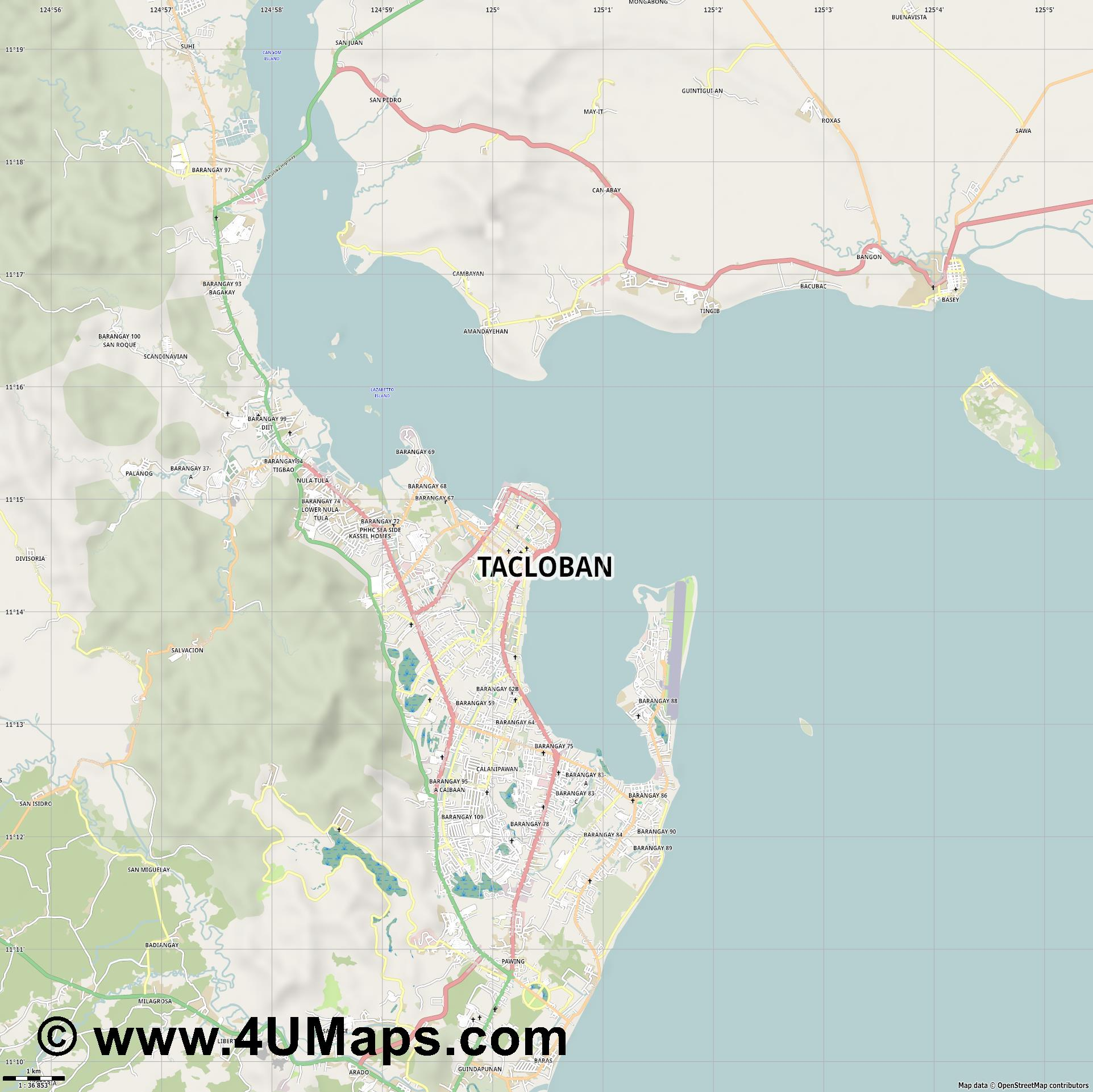 Tacloban  jpg high detail, large area preview vector city map