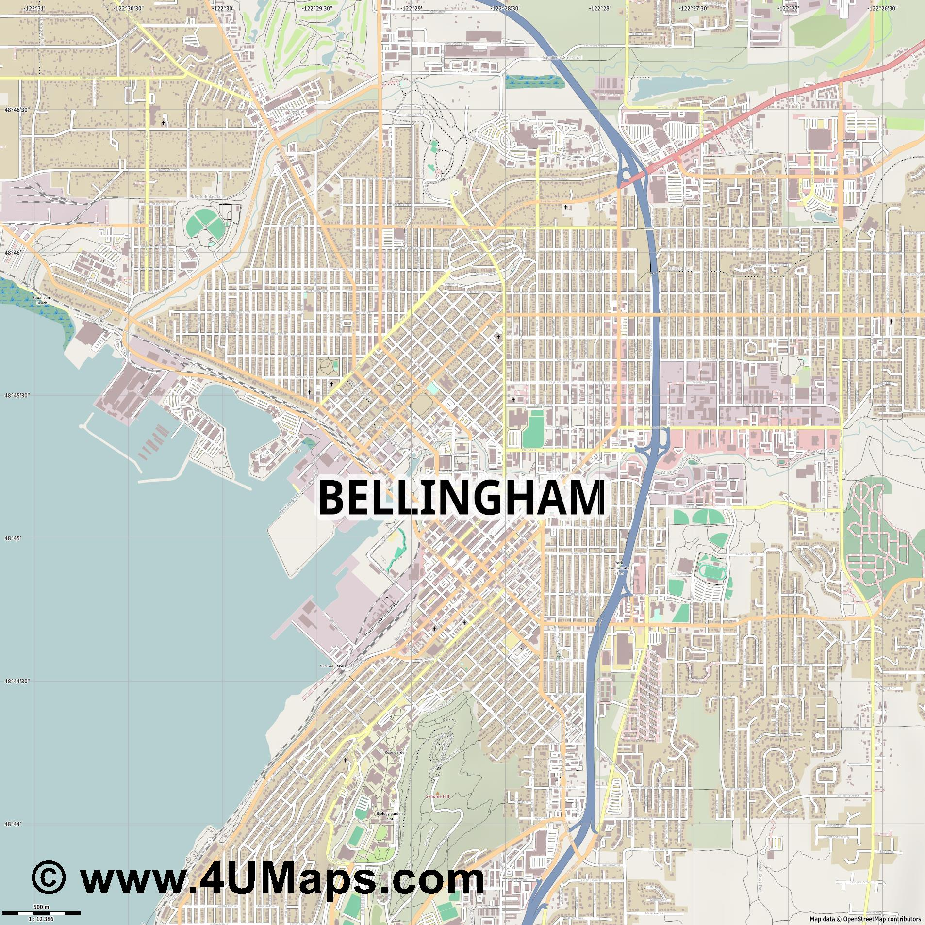 Bellingham  jpg ultra high detail preview vector city map